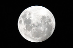 Full Moon 2011. Copyright Image Chris Symes/www.shuttersport.co.nz<br /> **Contact info@shuttersport.co.nz for use of image.
