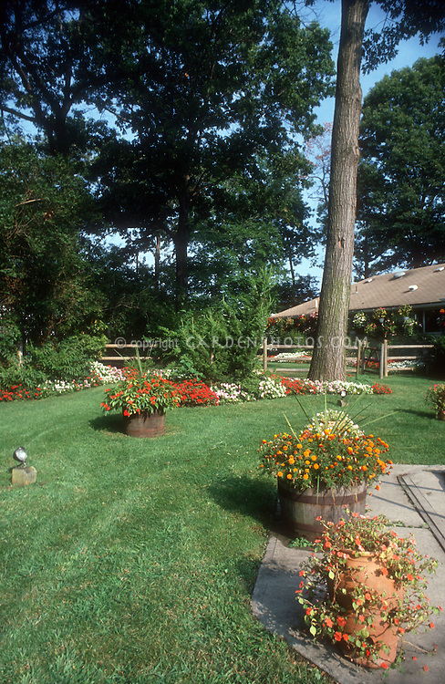 Backyard lawn grass, containers patio, large trees, house, impatiens, landscaping, wide view of beautiful landscape, green lawn grass