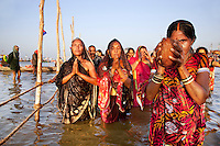 India. Uttar Pradesh state. Allahabad. Maha Kumbh Mela. A group of Indian Hindu devotee, all women wearing colorful sarees, take a holy dip and pray at Sangam. A woman holds a coconut in her hands. The coconut is the most sacred food and will be offered to Mother Ganges, considered as a deity. Two Indian Hindu volunteers watch the fence line in the bathing area and forbid people to croos it. The Kumbh Mela, believed to be the largest religious gathering is held every 12 years on the banks of the 'Sangam'- the confluence of the holy rivers Ganga, Yamuna and the mythical Saraswati. In 2013, it is estimated that nearly 80 million devotees took a bath in the water of the holy river Ganges. The belief is that bathing and taking a holy dip will wash and free one from all the past sins, get salvation and paves the way for Moksha (meaning liberation from the cycle of Life, Death and Rebirth). Bathing in the holy waters of Ganga is believed to be most auspicious at the time of Kumbh Mela, because the water is charged with positive healing effects and enhanced with electromagnetic radiations of the Sun, Moon and Jupiter. The Maha (great) Kumbh Mela, which comes after 12 Purna Kumbh Mela, or 144 years, is always held at Allahabad. Uttar Pradesh (abbreviated U.P.) is a state located in northern India. 8.02.13 © 2013 Didier Ruef