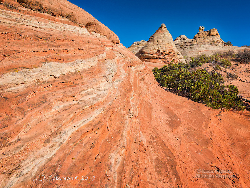 Ridgetop Forms, White Pocket, Arizona ©2017 James D Peterson.  This remote area is one of the many natural treasures within Arizona's Vermilion Cliffs National Monument.