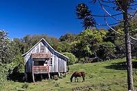 Casa no campo. Gramado. Rio Grande do Sul. 2008. Foto de Cris Berger.