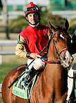 Feb 2010: Hotep and Robby Albarado before the Risen Star Stakes at the Fairgrounds in New Orleans, La.