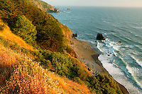 View from the Crescent Beach overlook of Del Norte Coast Redwoods State Park, part of the Redwoods state and national park, California