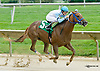 Galiana winning The Tax Free Shopping Distaff on Owners Day at Delaware Park on 9/13/14