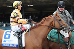 October 4, 2014:  and jockey win the Shadwell Turf Mile at Keeneland for owner and trainer .Jessica Morgan/ESW/CSM