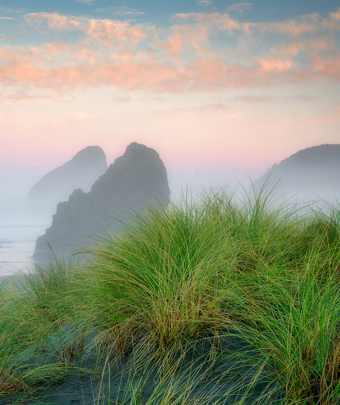 Cape Sabastian State Park with dune grass, fog and sunrise clouds. Oregon