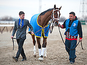 Escapefromreality ran big to finish second in the Withers.