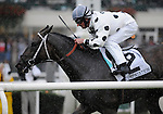09 October 03:  Interpatation (no. 2), ridden by Robby Albarado and trained by Robert Barbara, wins the 33rd running of the grade 1 Joe Hirsch Turf Classic Invitational Stakes for three year olds and upward at Belmont Park in Elmont, New York.