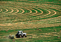 Graphic hay fields with tractor baling hay Wyoming USA