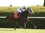 17 April 2010. West Ocean and Javier Castellano win the 14th running of The Giant's Causeway (Listed).