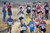 Cal Cross Country, Santa Clara Bronco Invitational, October 15, 2016