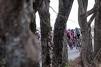 Daniel Oss (ITA/BORA - hansgrohe) peeping through<br /> <br /> Stage 1 from Lido di Camaiore to Lido di Camaiore (156km)<br /> <br /> 56th Tirreno-Adriatico 2021 (2.UWT) <br /> <br /> ©kramon