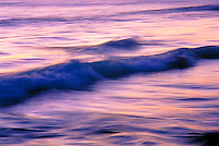 Gentle wave rolling in toward shore
