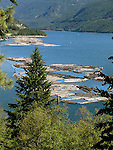 Pulp wood logs on Columbia River, British Columbia, Canada