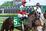 25 May 2009 : Dubai Majesty with Jamie Theriot in the irons in the post parade for the 6th running of the G3 Winning Colors stakes at Churchill Downs in Louisville, Kentucky.