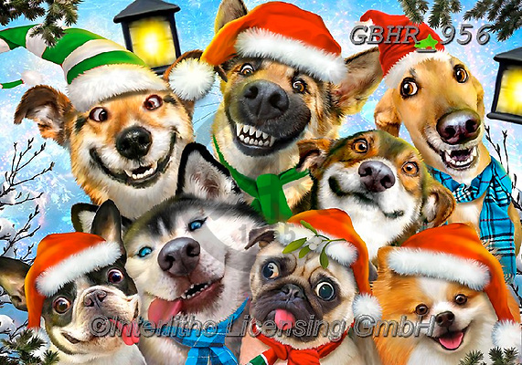 Howard, SELFIES, paintings+++++,GBHR956,#selfies#, EVERYDAY ,dogs, ,Christmas ,puzzle,puzzles