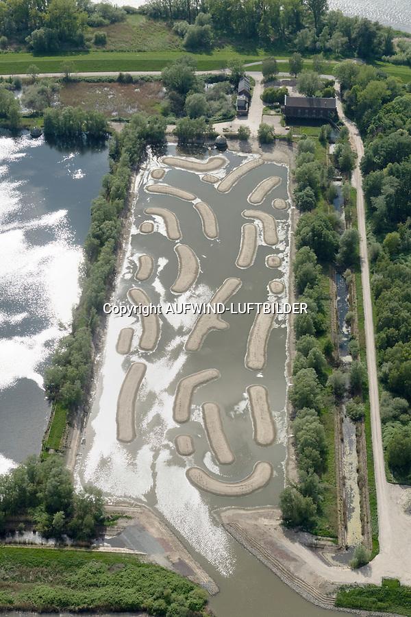 Schierlings-Wasserfenchel Billwerder Insel: EUROPA, DEUTSCHLAND, HAMBURG, BERGEDORF, (EUROPE, GERMANY), 24.02.2018: Neue Heimat für den Schierlings-Wasserfenchels auf der Billwerder Insel nahe des Holzhafen in dem nicht mehr in Nutzung befindlichen Absetzbecken der Hamburger Wasserwerke. Nach Bearbeitung und Bau von Prielen und Bewässerung ist ein 14 Hektar grosses Gebiet entstanden.