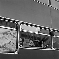 A woman looks out of the window of a bus. In another window is a picture of some sardines.