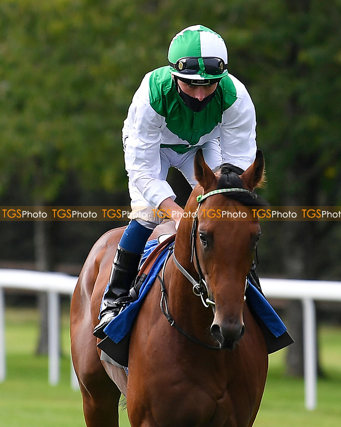 Royal Musketeer ridden by Kiaran Shoemark goes down to the start of  The Draintech Tankers Nursery Stakes during Horse Racing at Salisbury Racecourse on 11th September 2020