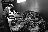 """Russia. Krasnodar Krai Region. Krasnodar. A butcher cuts meat to make sausages. The man is working in a new large private farm on what used to be a sovkhoz farm. A sovkhoz was a form of state-owned farm in the Soviet Union. It is usually contrasted with kolkhoz, which is a collective-owned farm. Unlike the members of a kolkhoz, which were called """"kolkhozniks"""" or """"kolkhozniki"""" (the workers of a sovkhoz were only colloquially called """"sovkhozniki"""". Krasnodar (also known as Kuban) is the largest city and the administrative centre of Krasnodar Krai in Southern Russia. 21.09.1993 © 1993 Didier Ruef"""