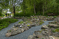 Rock garden at Alaska Botanical Garden, Anchorage