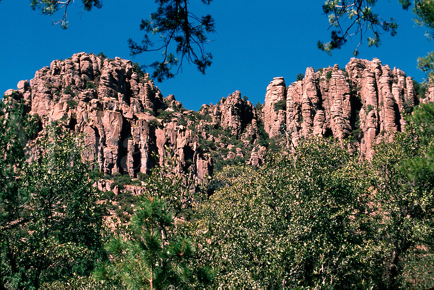 Organ Pipe Formation; natural rhyolite rock formations formed by volcanic activity and erosion. Chiricahua National Monument, Arizona.