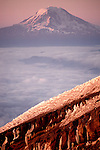 Mt. Adams seen from Nisqually Glacier on Mt. Rainier, Washington, USA