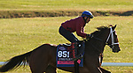 Aunt Pearl, trained by trainer Brad Cox, exercises in preparation for the Breeders' Cup Juvenile Fillies Turf at Keeneland Racetrack in Lexington, Kentucky on November 3, 2020.