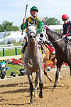 2011 05 21: Paddy O'Prado with Kent Desormeaux wins the Grade 2 Dixie Stakes for 3 year olds & up,  at 1 3/8 mile on the turf, Pimlico Racetrack. Trainer Dale Romans. Owner Donegal Racing
