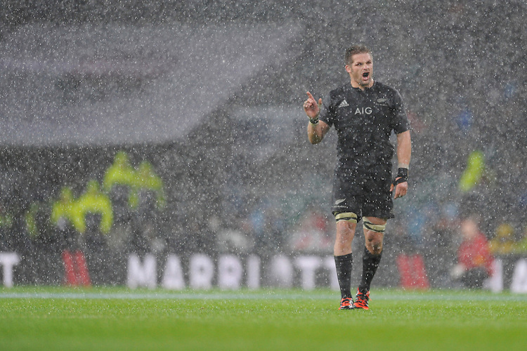 Richie McCaw of New Zealand during the QBE International match between England and New Zealand at Twickenham Stadium on Saturday 8th November 2014 (Photo by Rob Munro)
