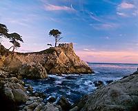 Lone cypress, landmark along California coastline, near Carmel.