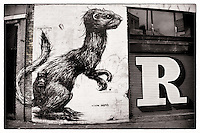 Street art by Roa and Eine, Shoreditch, East London http://www.vivecakohphotography.co.uk/2011/04/06/2982/