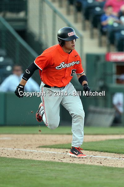 Michael Conforto - 2014 Oregon State Beavers (Bill Mitchell)
