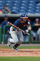 Cal State Fullerton Titans infielder Dustin Vaught (31) lays down a bunt that went foul during a game against the Louisville Cardinals on February 15, 2015 at Bright House Field in Clearwater, Florida.  Cal State Fullerton defeated Louisville 8-6.  (Mike Janes/Four Seam Images)