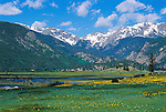 Moraine Park, summer, meadow, Rocky Mountain National Park, Colorado, mountains, snow-capped peaks