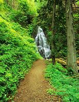 Fairy Falls, Oregon.