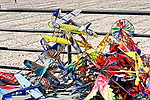 Kites 5, Huntington Beach, CA.
