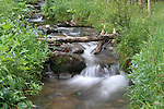 Hidden Valley Stream in Rocky Mountain National Park, west of Estes Park, Colorado. .  John leads private photo tours throughout Colorado. Year-round Colorado photo tours.