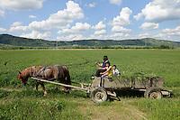 ROMANIA Transylvania, Voila, farmer with horse wagon  / RUMAENIEN Transsilvanien Siebenbuergen, Voila, Bauer mit Pferdewagen