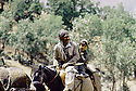 Irak 1985.Dans les zones libérées, région de Lolan, sur une piste un homme et un enfant a cheval.Iraq 1985.In liberated areas, Lolan district, a man and a boy ridding a horse, on the track