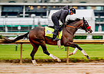 April 29, 2021: Hot Rod Charlie, trained by trainer Doug O'Neill, exercises in preparation for the Kentucky Derby at Churchill Downs on April 29, 2021 in Louisville, Kentucky. Scott Serio/Eclipse Sportswire/CSM