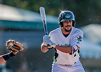 19 June 2018: Vermont Lake Monsters infielder Jesus Lage takes a ball high during game action against the Connecticut Tigers at Centennial Field in Burlington, Vermont. The Lake Monsters defeated the Tigers 5-4 in the conclusion of a rain-postponed Lake Monsters Opening Day game started June 18. Mandatory Credit: Ed Wolfstein Photo *** RAW (NEF) Image File Available ***