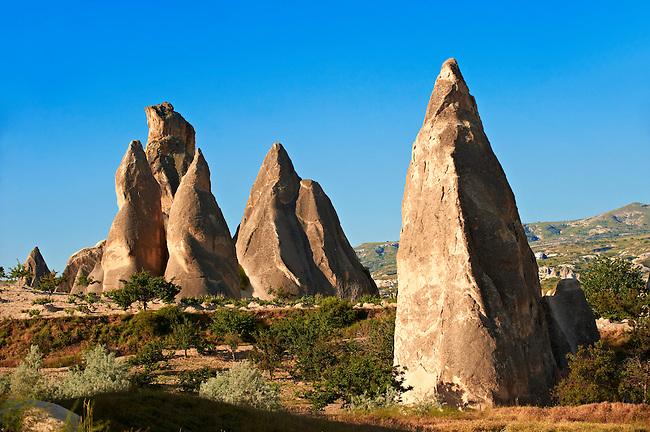 Fairy chimney tuff rock pillars formations of  Goreme, Cappadocia, Turkey