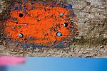 Europa, DEU, Deutschland, Nordrhein-Westfalen, Ruhrgebiet, Bottrop, Halde Haniel, Installation Totems vom baskischen Maler und Bildhauer Agustín Ibarrola aus Eisenbahnschwellen, Kunst, Kunstwerke, Bildende Kunst, Kuenste, Skulptur, Skulpturen, Tourismus, Touristik, Touristisch, Touristisches, Urlaub, Reisen, Reisen, Ferien, Urlaubsreise, Freizeit, Reise, Reiseziele, Ferienziele, Die Halde Haniel in Bottrop (an der Grenze zu Oberhausen-Koenigshardt) ist mit 159 m Hoehe (184,9 m ueber Normalnull) eine der hoechsten Halden des Ruhrgebiets. Die Halde ist ein Panorama der Route der Industriekultur und bietet die Aussicht ueber das nahegelegene Bergwerk und das nordwestliche Ruhrgebiet. 2002 wurde die Installation Totems vom baskischen Maler und Bildhauer Agustín Ibarrola aus ueber einhundert Eisenbahnschwellen geschaffen. Die Arbeit verbindet die scheinbaren Gegensaetze von Industrieraum und Natur (Aussage des Kuenstlers).  | Quelle:https://de.wikipedia.org/wiki/Halde_Haniel<br /> <br /> [Fuer die Nutzung gelten die jeweils gueltigen Allgemeinen Liefer-und Geschaeftsbedingungen. Nutzung nur gegen Verwendungsmeldung und Nachweis. Download der AGB unter http://www.image-box.com oder werden auf Anfrage zugesendet. Freigabe ist vorher erforderlich. Jede Nutzung des Fotos ist honorarpflichtig gemaess derzeit gueltiger MFM Liste - Kontakt, Uwe Schmid-Fotografie, Duisburg, Tel. (+49).2065.677997, ..archiv@image-box.com, www.image-box.com]