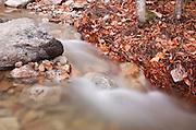Tecumseh Brook near the Mount Tecumseh Trail (ski area side) in the White Mountains, New Hampshire USA.