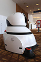 PyeongChang 2018: Robots