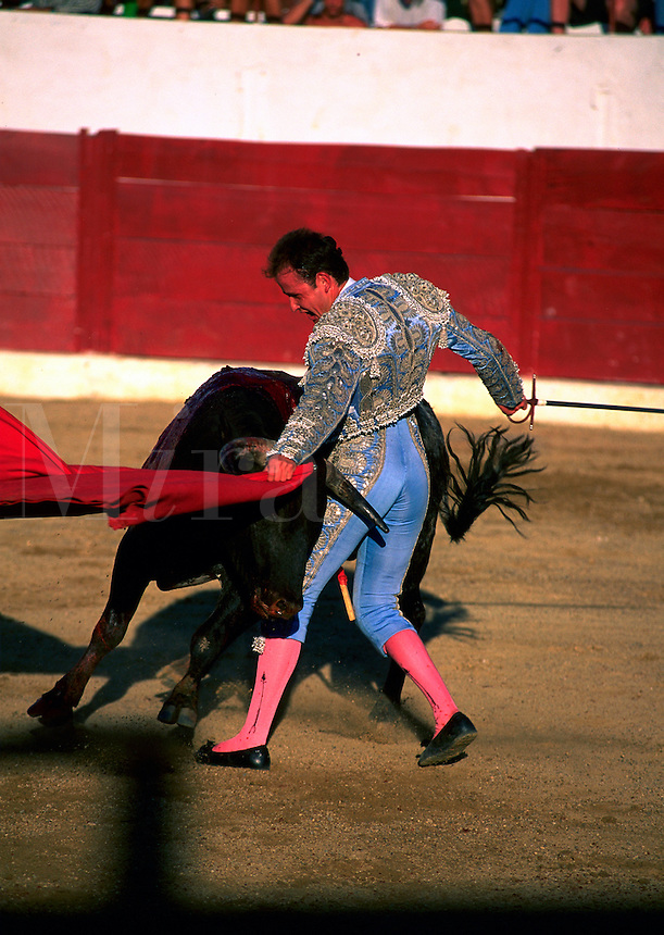 Bullfighter in traditional clothing and bull in action. Mexico.