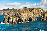 West Head, rock islets at entrance into Tory Channel in Marlborough Sounds at Cook Strait between North and South Island, New Zealand, NZ