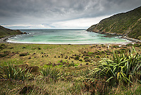 Roaring Bay near Nugget Point, Catlins, Southland, New Zealand, NZ