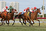 HALLANDALE BEACH, FL - JANUARY 30:      Pricedtoperfection #6 with Joel Rosario on board duels with Born to Be Winner #3 with Luis Saez on board down the final stretch to win the 25th running of the Sweetest Chant Stakes (G3) at Gulfstream Park on January 30, 2016 in Hallandale Beach, Florida. (Photo by Liz Lamont)